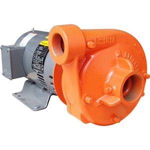 Berkeley Pumps Sales
